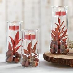 #PartyLite Clearly Creative Symmetry Trio #DIY fall decor, acorns, nuts, candles, glass, trio centerpiece, wood, leaves Get yours at http://www.partylite.biz/tawnischaad #candles