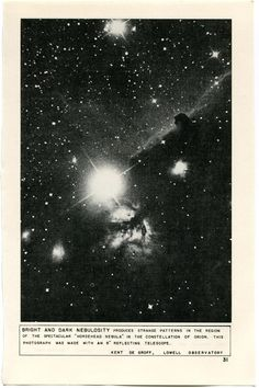 """akubizone: """" invisiblestories: """" Lutz Bacher - The Celestial Handbook (via likeafieldmouse) """" I saw some amazing stars while swimming this evening. Nocturne, Arte Do Sistema Solar, Aesthetic Space, Photocollage, Stargazing, Stars And Moon, Wall Collage, Cosmos, Illustration"""