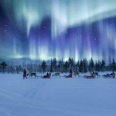 Aurora Borealis Northern Lights in Lapland Finland Scenery Pictures, Cool Pictures, Cool Photos, Northan Lights, See The Northern Lights, Evening Sky, Beautiful Sky, Beautiful Places To Visit, Milky Way