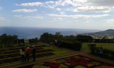 Jardim Botânico da Madeira.