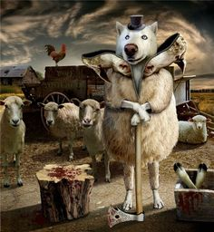 A wolf in sheep's clothing represents Gatsby, who has a whole team of followers that don't know his true nature. He may appear harmless, but his deception kept him safe before his death.