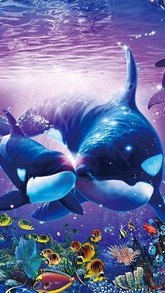 Newest picture sea animals wallpaper thoughts,, animals Orca Art, Dolphin Art, Whale Art, Underwater Animals, Underwater Art, Orcas, Dolphin Photos, Whale Painting, Delphine