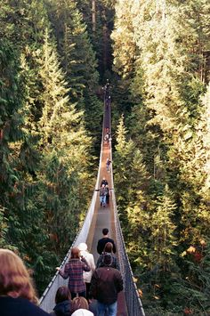 The Capilano Suspension Bridge - British Columbia, Canada.  I'd love to do this, but it would be super scary!