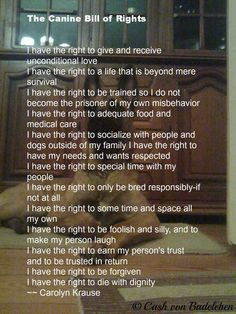 The canine Bill of Rights