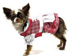 #Hundedirndl Coala Neue Trends, Collection, Dirndl, Oktoberfest, Doggies