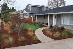 Drought Tolerant Front Yard – Gentle Giants Gardening