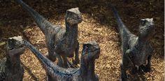 Der Raptoren-Squad aus Jurassic World: Blue, Charlie, Delta und Echo