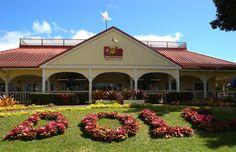 Dole Plantation, Oahu, Hawaii http://traveldreamscapes.blogspot.com/search/label/Hawaii%3A%20Honolulu%20Oahu