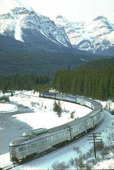 the picture shows the train are driving at the snow land. Tibet