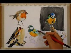 WATERCOLOR-PAINTING BIRDS-PINTANDO PÁJAROS - YouTube