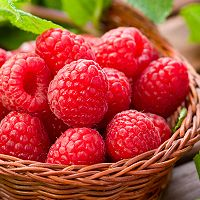 Crafters Choice™ Fresh Picked Raspberry* FO 644 - Wholesale Supplies Plus