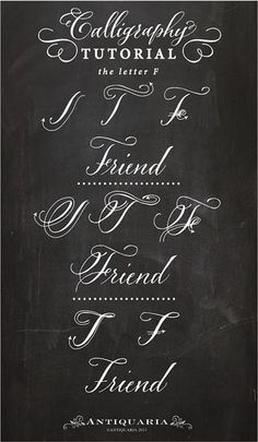 "Calligraphy Tutorial | the capital letter ""F"" | Antiquaria | Bloglovin"