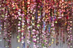 "kateoplis: ""Always bring flowers, Rebecca Louise Law """