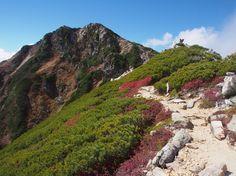 三股から常念岳|北アルプス登山ルートガイド。Japan Alps mountain climbing route guide