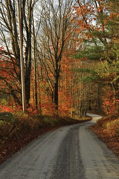Travel | Vermont | USA | Scenic Drive | Fall Foliage | Beautiful | Nature