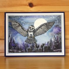 Janie's Collection – Orla Owl stamp set designed by Janie Burnett-Bleach for Hobby Art Stamps. This stunning clear set consists of 9 clear stamps. Card by Elaine Parker Clear Stamps, Fused Glass, Sheena Douglass, Projects To Try, Birds, Art Cards, Stamp Sets, Art Designs, Handmade Cards