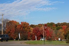 Luscious fall foliage; captured by me in Oct. 2012 in Monaca (Beaver County), PA, near the campus of the local community college.