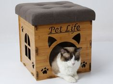 Collapsible Pet House & Bench Decor | Coupaw Fun Facts About Cats, Cat Facts, Wooden Cat House, Diy Dog Toys, Bench Decor, Animal Rescue Site, Cat Room, Pet Furniture, Pet Life