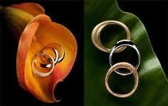 """"""" How to photograph jewelry: Photoshop tips from the pros """" by Cathleen McCarthy (""""JuicyRings"""" by Emma Bracfield)"""