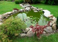 Resultado de imagen para jardines acuaticos orientales