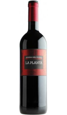 La Planta 2010 - Valladolid  - D.O. Ribera del Duero  - Vinos recomendados
