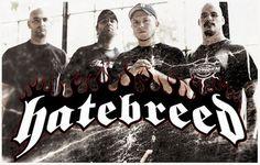 All of THRASH metal dieorthrash.net #metal #thrash #thrashmetal #heavy #heavymetal #music #hatebreed #thrasher #metalhead #slayer #antrax #megadeth #kreator #metallica