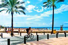 Bongaile julkkiksia Mallorcalla! Maailmantähdet ovat jo vuosikymmeniä nauttineet vapaa-ajasta Mallorcan maisemissa. Vinkki! kannattaa pitää silmät auki huvivene- ja purjehdusseuran satamissa.  http://www.finnmatkat.fi/Lomakohde/Espanja/Mallorca/?season=kesa-2014