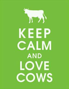 Would it be terrible to pin this to food board??? I think not! :)  Dude wth Yes we eat beef but Love cows as in if you work with them and Train them