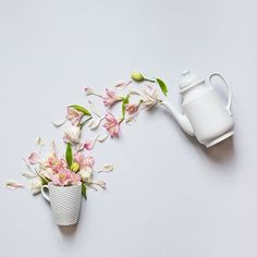 ideas for flowers photography ideas Flat Lay Photography, Still Life Photography, Photography Ideas, Flower Photography, Creative Photography, Object Photography, Spring Photography, Art Floral, Floral Flowers