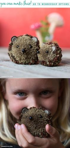 Hedgehog Pom Pom Pals (Video) - Lia Griffith - www Crafts For Teens To Make, Crafts To Do, Diy Craft Projects, Yarn Crafts, Diy For Kids, Kids Crafts, Preschool Crafts, Yarn Animals, Pom Pom Animals