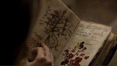 https://www.wattpad.com/myworks/48686927-as-bruxas-de-nova-orleans [Book of Shadows]