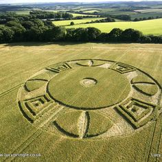 06/16/2016 - Wylye, Wiltshire, UK crop circle.