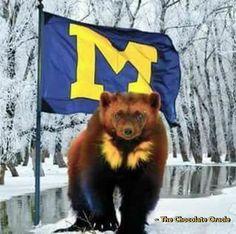 #Hail #MichiganWolverines #Football #GoBlue #Michigan