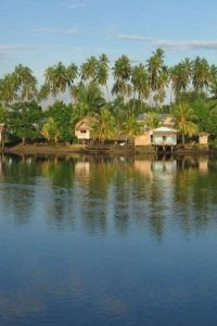 solomon island landscape.
