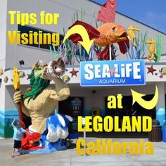 What to expect at the SEA LIFE Aquarium at LEGOLAND California | tipsforfamilytrips.com