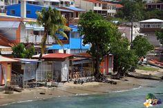 Le Bourg de Sainte Luce en #Martinique