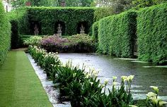 Shute House (Dorset) © Open Garden at Gardens-Guide.com - Open Times, Features, Admissions, Maps, History, & Local Amenities