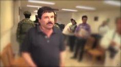 Los perros policía que velaban por 'El Chapo'