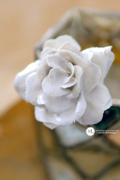 Flowers Dipped in Plaster Silk Roses, Silk Flowers, Paper Flowers, Plaster Crafts, Resin Crafts, Paris Crafts, Paint Dipping, Plaster Of Paris, Egg Carton Crafts