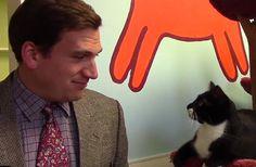 Une vidéo à tout petit budget et très drôle, c'est l'idée qu'a eu un refuge pour animaux américain pour convaincre les gens d'adopter un des chats dont leur équipe s'occupe. C'est mignon et doux comme un matou.
