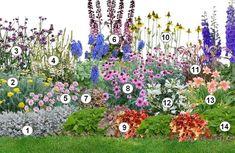 Delphinium, Pennisetum Setaceum, Mixed Border, English Country Decor, Garden Online, Garden Design Plans, Border Plants, Potager Garden, Garden Borders