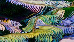 L'opera di Madre natura nel Nord delVietnam
