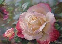maureen bainbridge artist   DOUBLE DELIGHT, PRINT ONLY $180, 64 cms x 45 cms ( landscape aspect)