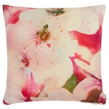 Yazmin Collection - Decorative Pillow