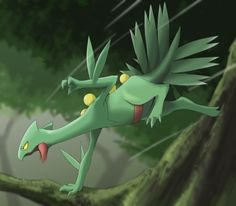 Sceptile chasing his food. - - Just ignore the tags 👀 Pokemon Moon, Pokemon Fan Art, All Pokemon, Pokemon Stuff, Pokemon Team, Nintendo Pokemon, Pokemon Games, Grass Type Pokemon, Green Pokemon