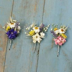 Festival Meadow Dried Flower Hair Grips Set Of Five