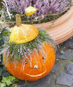 Halloween pumpkin with hair of the calluna flowers Funny Pumpkins, Fall Pumpkins, Halloween Pumpkins, Halloween Crafts, Outside Fall Decorations, Thanksgiving Decorations, Halloween Decorations, Diy Fall Wreath, Fall Diy