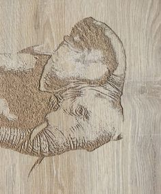 Photo VCarving Pencil Drawings