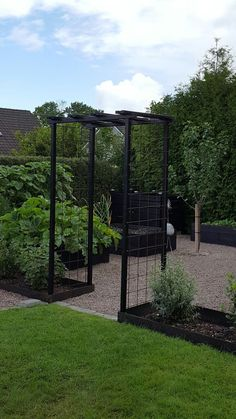 I'd like some thing similar to separate our back garden where the washing li - Garten Back Gardens, Small Gardens, Outdoor Gardens, Small Vegetable Gardens, Garden Cottage, Garden Beds, Balcony Garden, Garden Arbor, Vegetable Garden Design