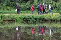 Impression vom Volksfreund-Wandertag durch den Meulenwald.